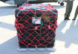 defence cargo pallet net